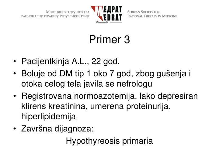 Primer 3