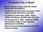 an america free or slave