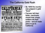 the california gold rush3