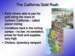 the california gold rush5