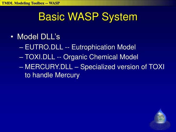 Basic WASP System