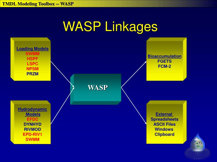 WASP Linkages