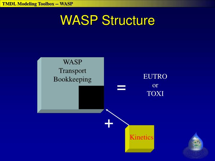 WASP Structure