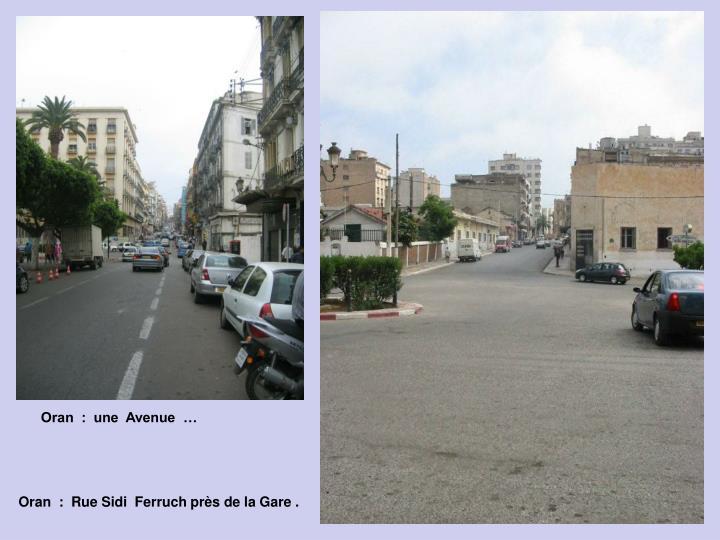 Oran  :  une  Avenue  …