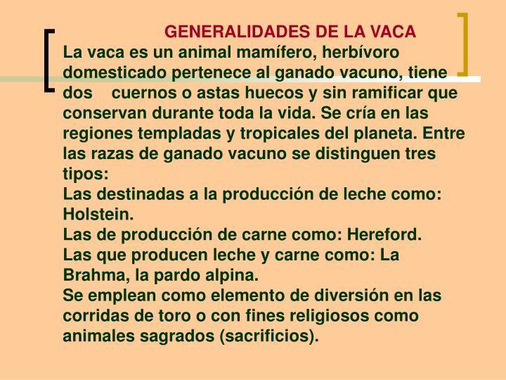 GENERALIDADES DE LA VACA