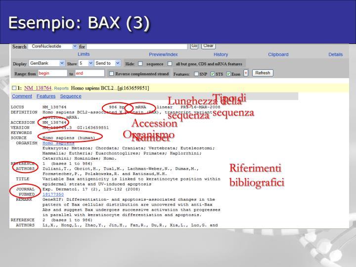 Esempio: BAX (3)