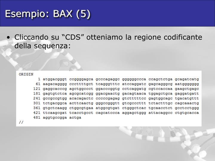 Esempio: BAX (5)