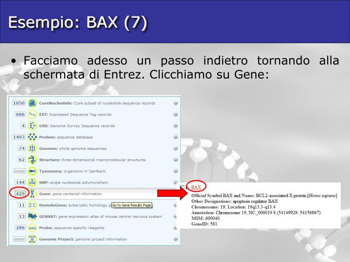 Esempio: BAX (7)