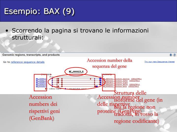 Esempio: BAX (9)