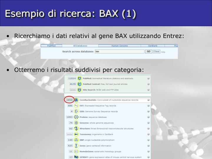 Esempio di ricerca: BAX (1)