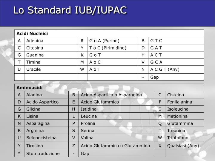 Lo Standard IUB/IUPAC