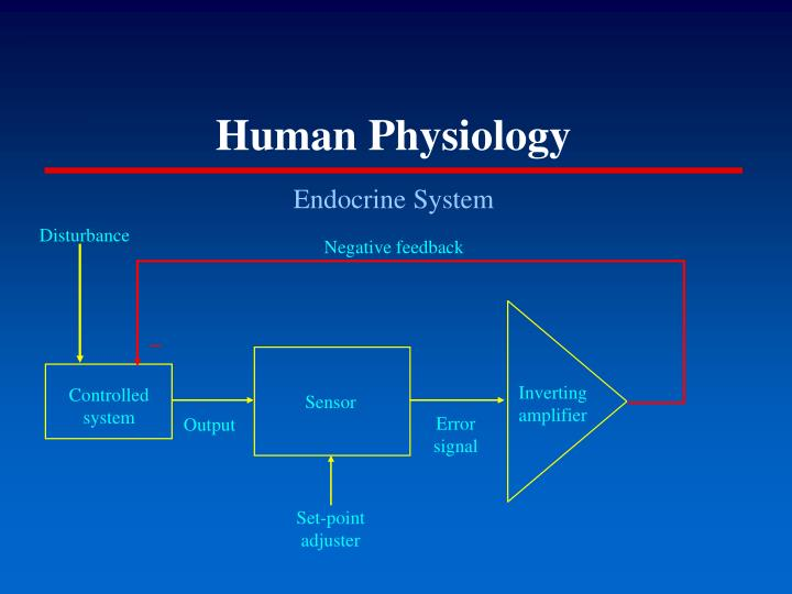 Human physiology2