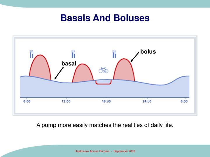 Basals And Boluses