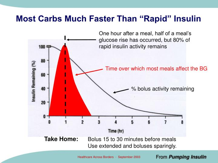 "Most Carbs Much Faster Than ""Rapid"" Insulin"
