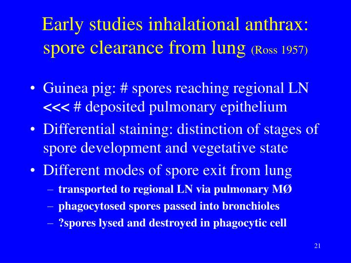 Early studies inhalational anthrax: spore clearance from lung