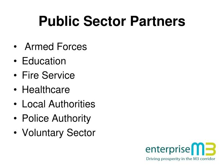 Public Sector Partners
