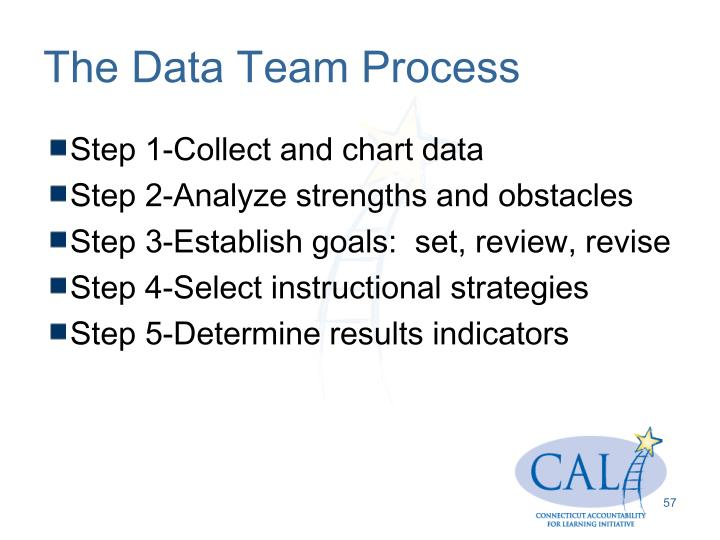The Data Team Process