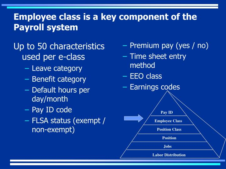 Employee class is a key component of the Payroll system