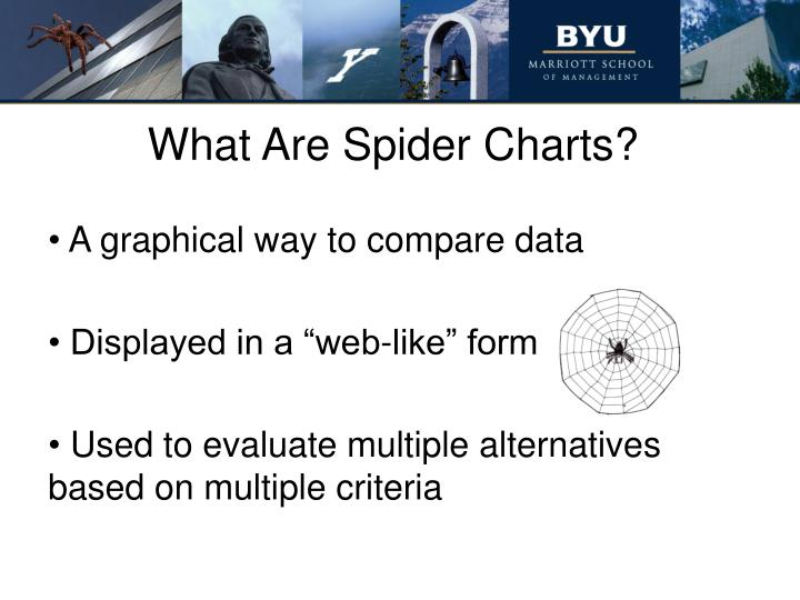 What Are Spider Charts?