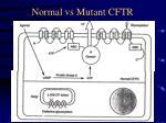 normal vs mutant cftr