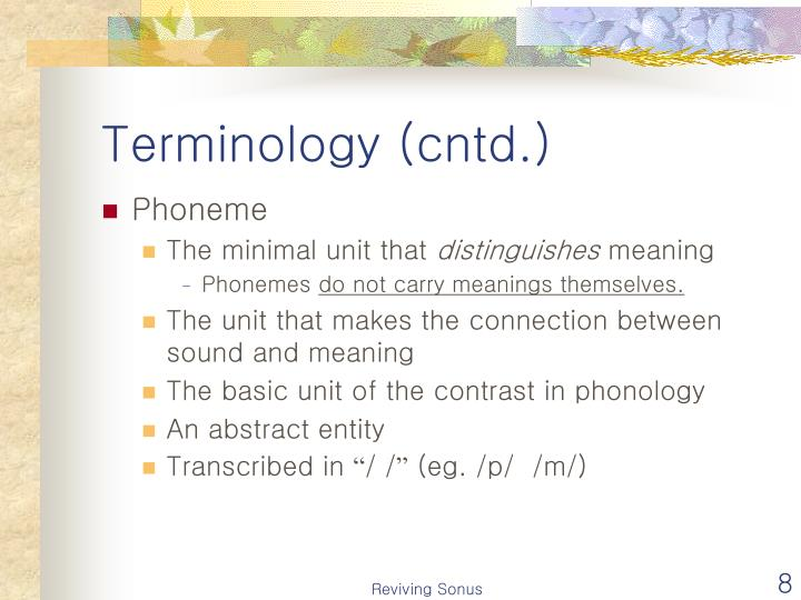 the relationship between phone phoneme and allophone