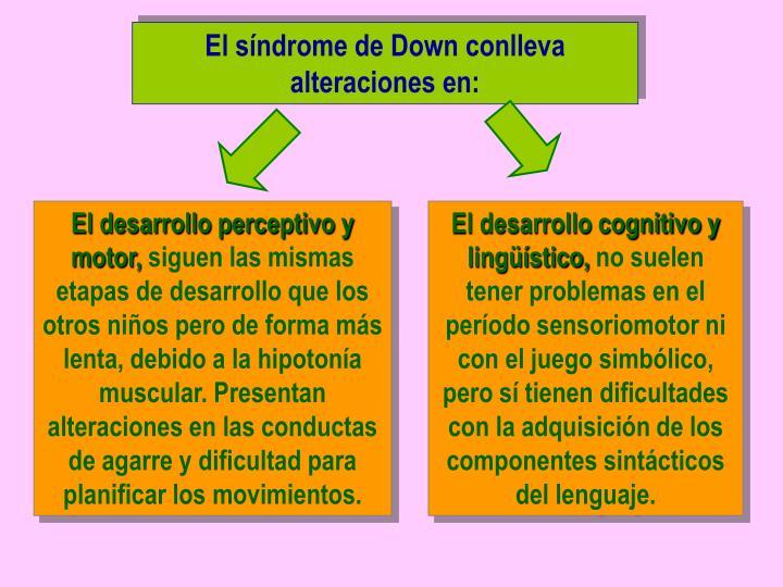 El síndrome de Down conlleva alteraciones en: