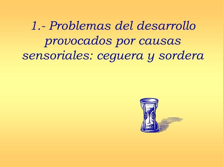 1.- Problemas del desarrollo provocados por causas sensoriales: ceguera y sordera