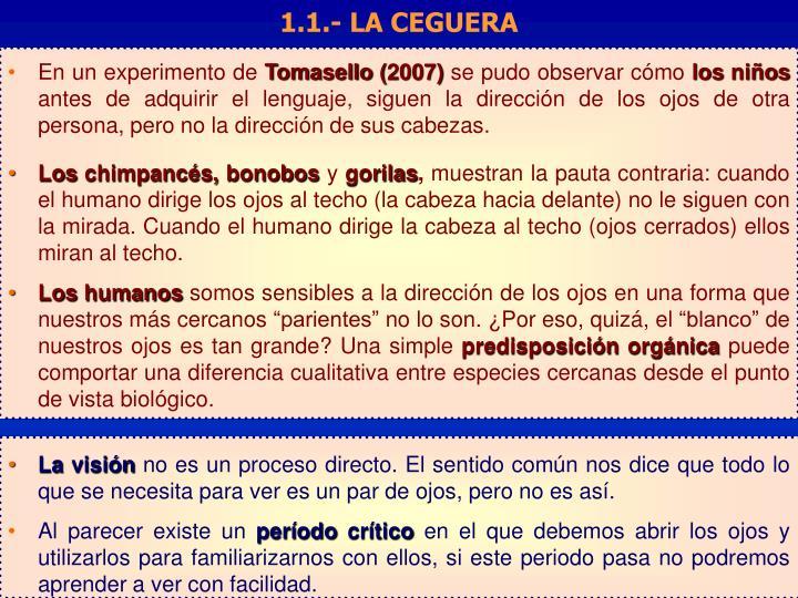1.1.- LA CEGUERA