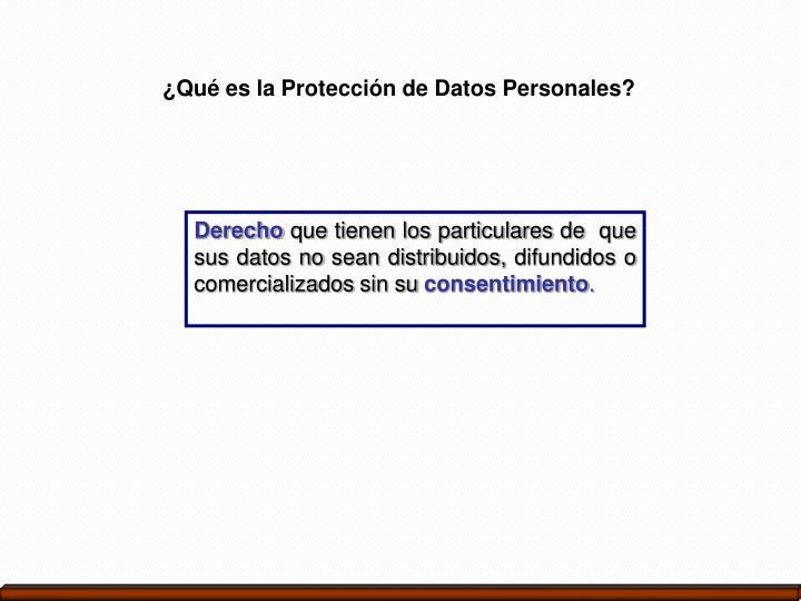 ¿Qué es la Protección de Datos Personales?