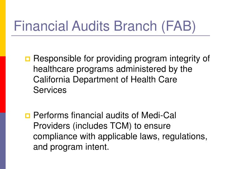 Financial Audits Branch (FAB)