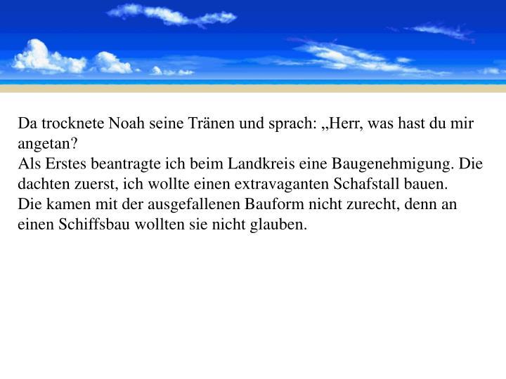 """Da trocknete Noah seine Tränen und sprach: """"Herr, was hast du mir angetan?"""