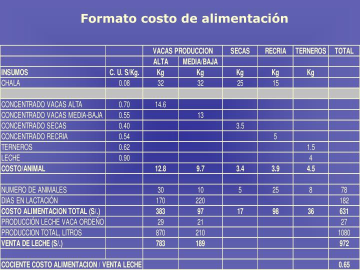 Formato costo de alimentaci