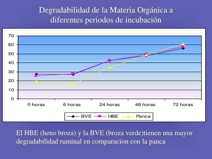 Degradabilidad de la Materia Orgánica a