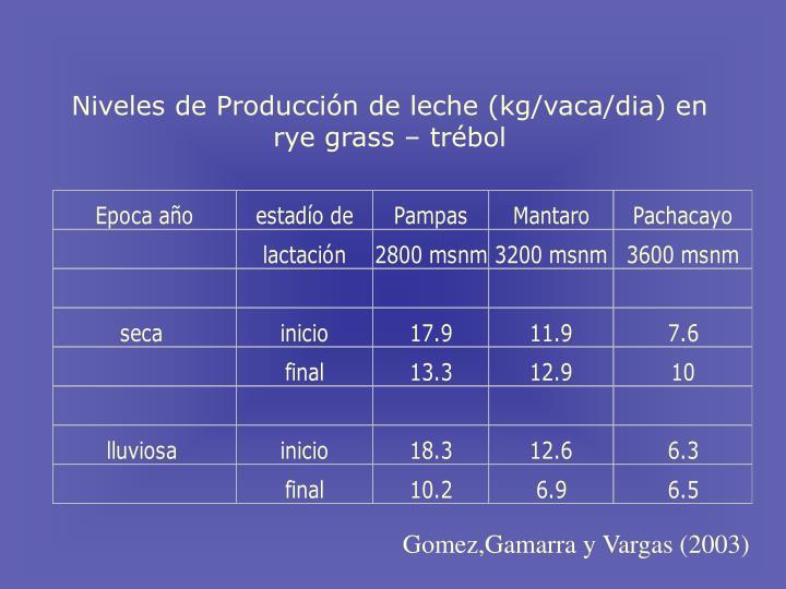 Niveles de Producci