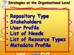 strategies at the organisational level