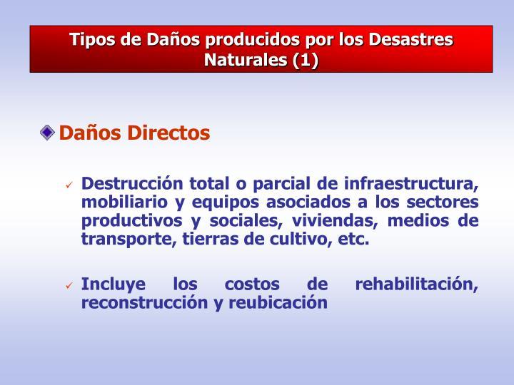 Tipos de Daños producidos por los Desastres Naturales (1)