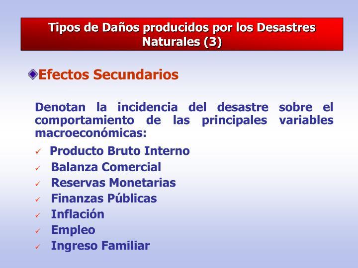 Tipos de Daños producidos por los Desastres Naturales (3)