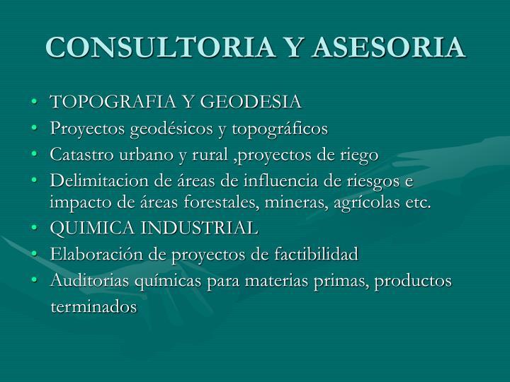 CONSULTORIA Y ASESORIA