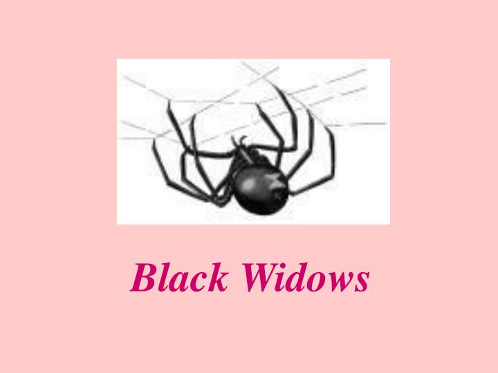 Black Widows