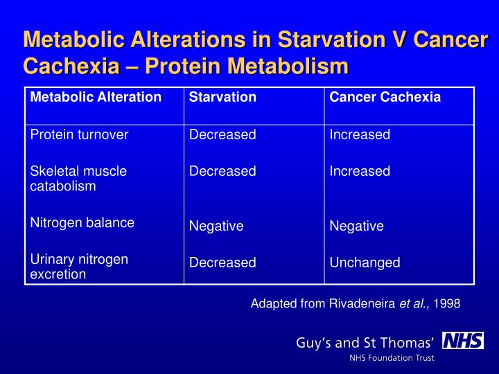 Metabolic Alterations in Starvation V Cancer Cachexia – Protein Metabolism