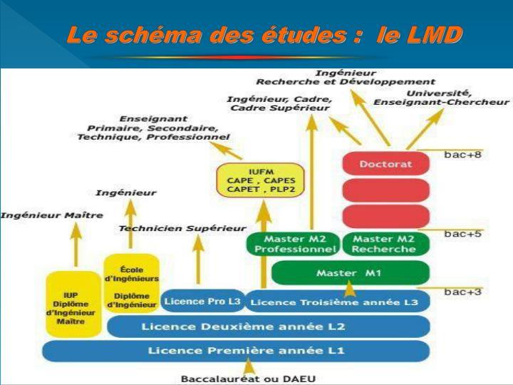 Le schéma des études :  le