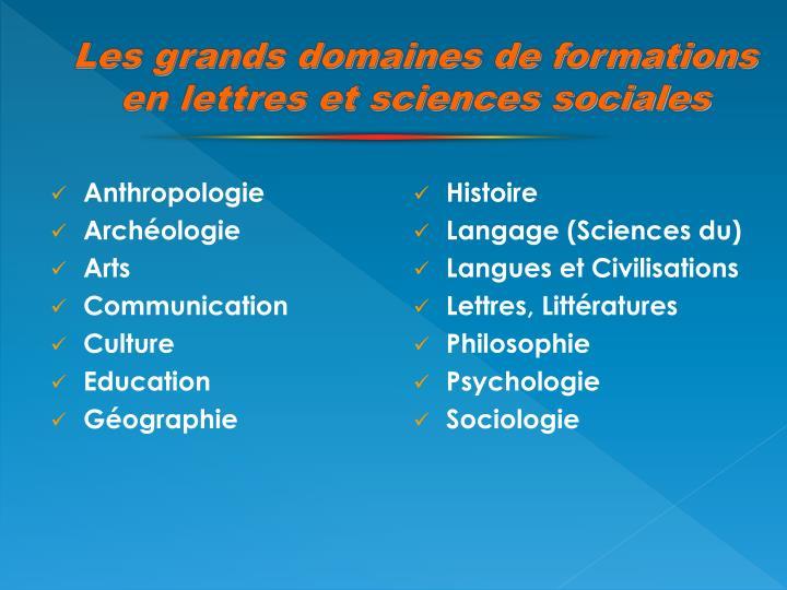 Les grands domaines de formations  en lettres et sciences sociales