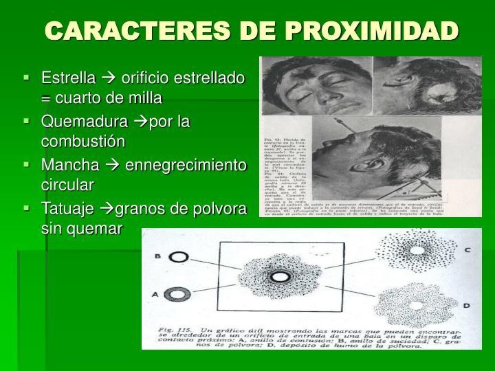 CARACTERES DE PROXIMIDAD