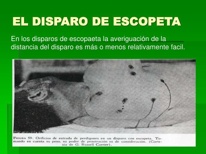 EL DISPARO DE ESCOPETA