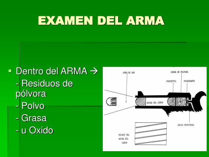 EXAMEN DEL ARMA