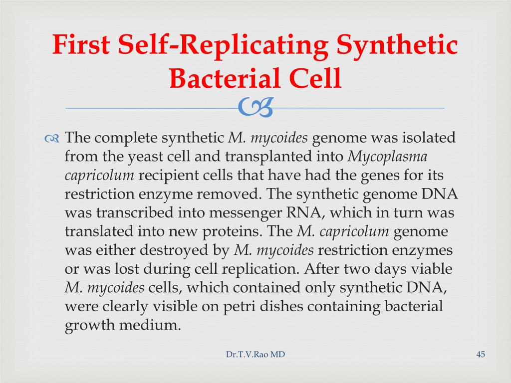 First Self-Replicating Synthetic Bacterial Cell