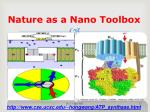 nature as a nano toolbox