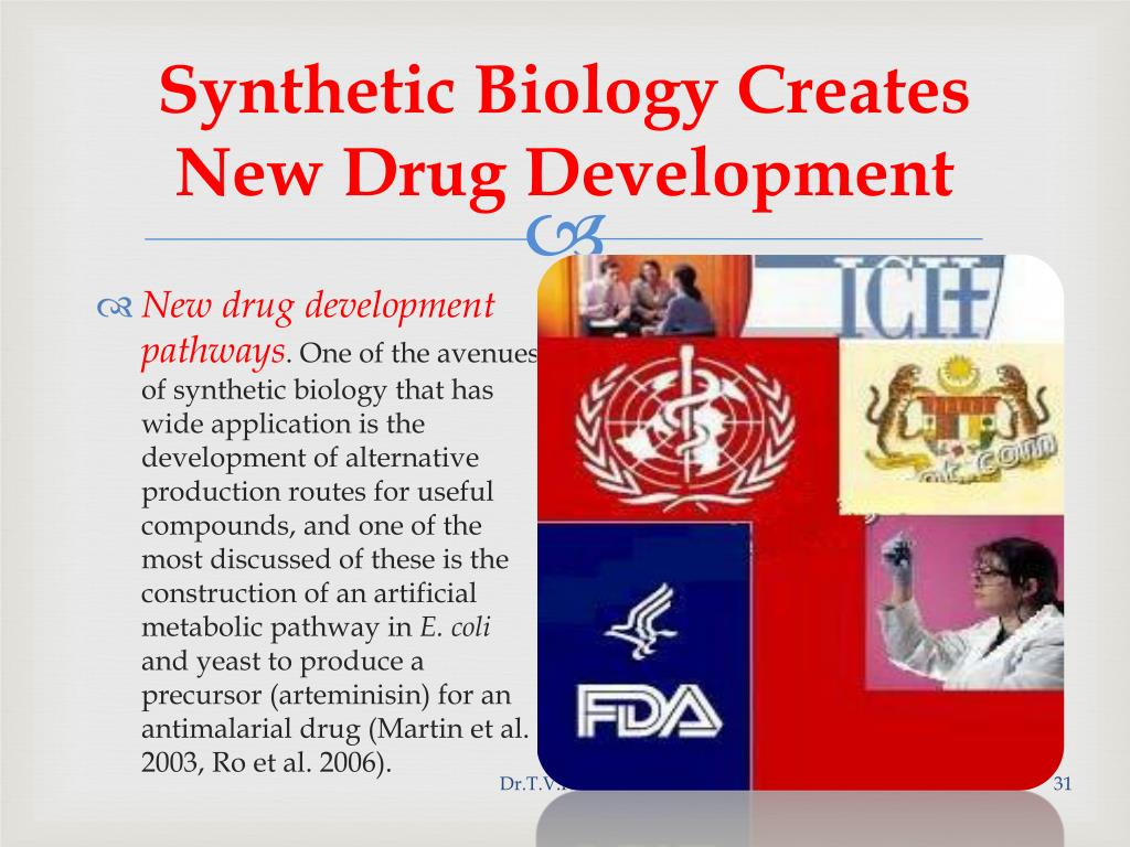 Synthetic Biology Creates New Drug Development