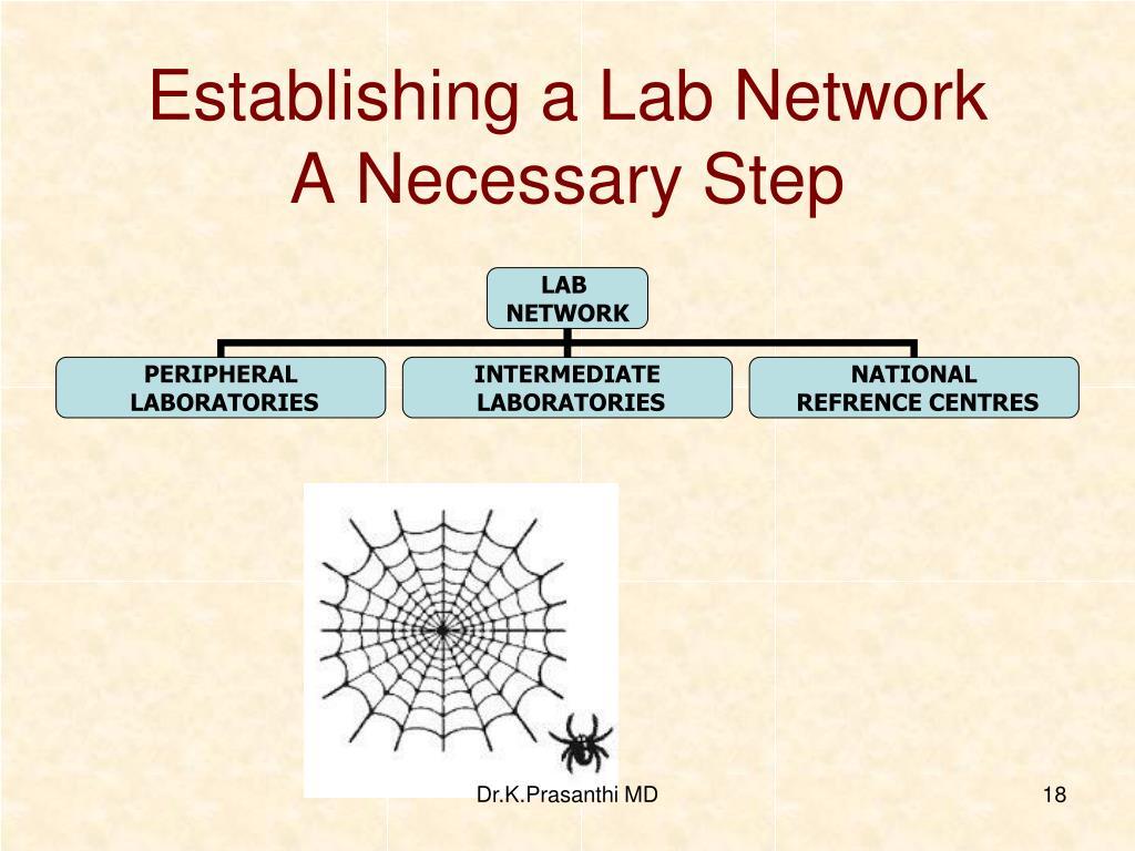 Establishing a Lab Network