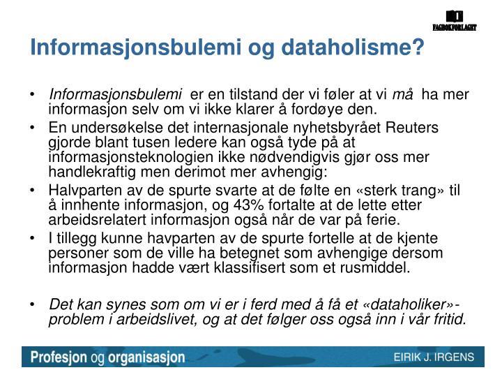 Informasjonsbulemi og dataholisme?